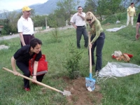 Guests and participants of the festival in action of planting trees