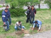 Участниците на фестивала в акция по засаждане на дървета